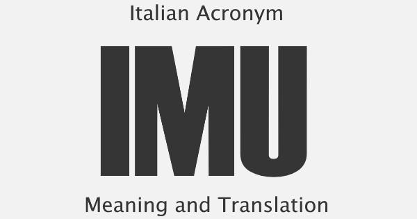IMU Acronym Meaning