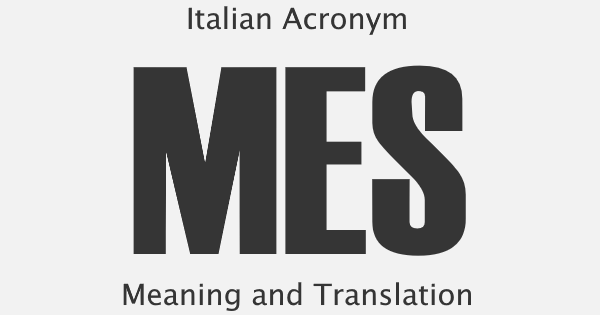 MES Acronym Meaning
