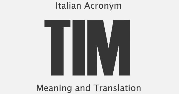 TIM Acronym Meaning